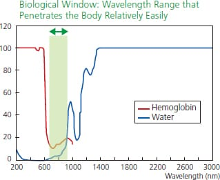 Fig.1 Absorbance of Water and Hemoglobin in the Infrared Wavelength Range