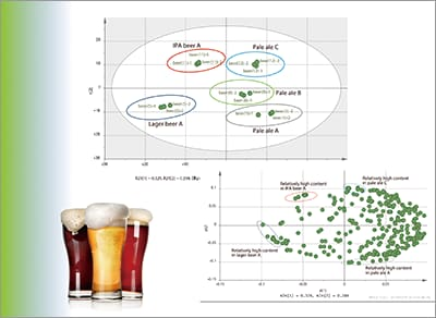 Quality Evaluation Methods Involving Total Analysis of Metabolites in Beer