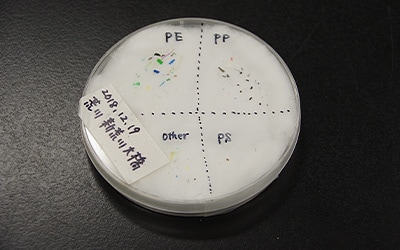 An example of the microplastics collected