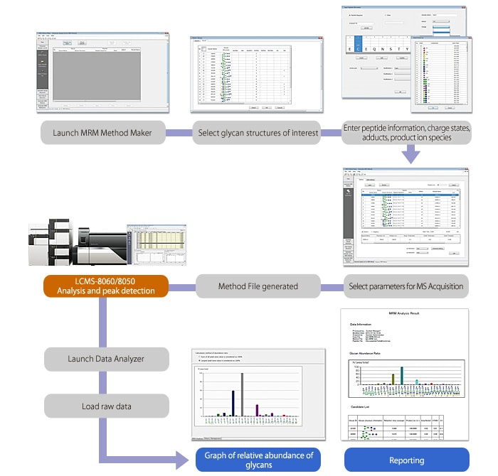 MRM analysis workflow