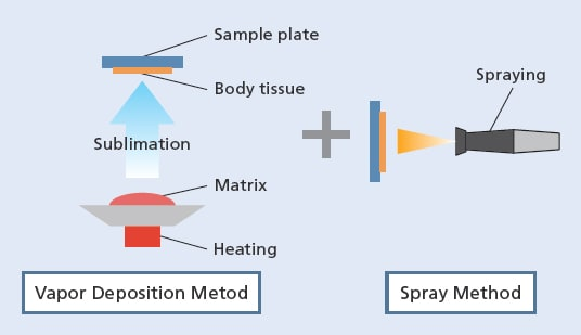 Two-Step Vapor Deposition