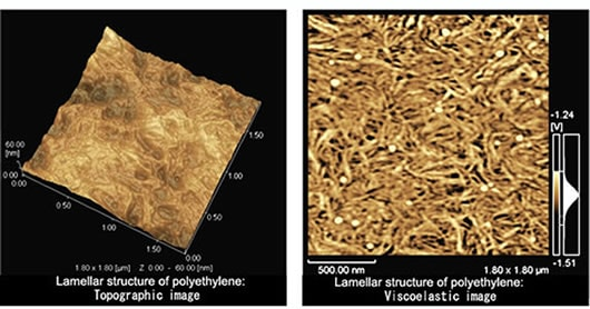 Observation of Lamellar Structure of Polyethylene Film