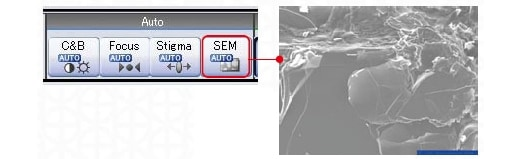 Start SEM imaging with a single click.