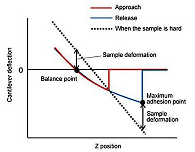 Force Curve of a Soft Sample