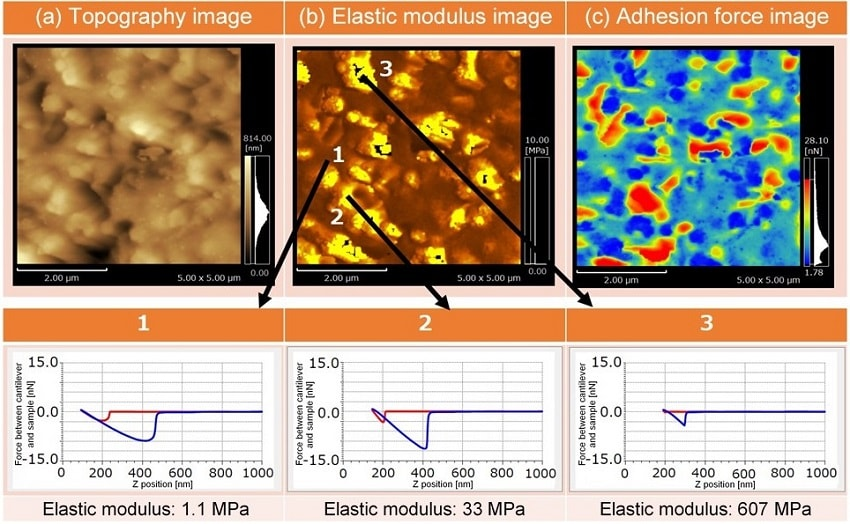 Mapping of Elastic Modulus and Adhesion Force