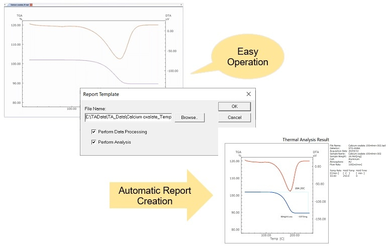 Automatic Manipulation and Automatic Analysis Functions (Template Function)