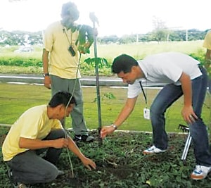 Planting Trees in the Philippines