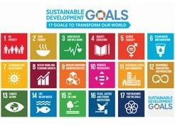 Approach to SDGs through business